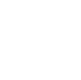 D2 Automotive logo white